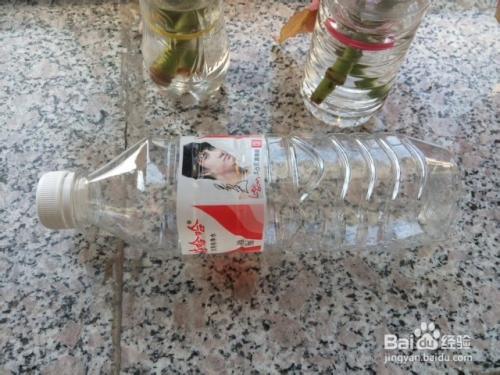 手工diy:变废为宝:[3]矿泉水瓶变身简洁花瓶图片