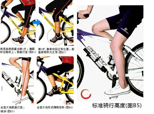 怎样正确设置自行车的坐垫
