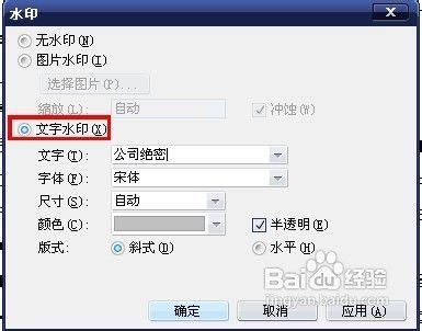 03.07 word2003文档中怎么样去水印 18 2011.04.图片