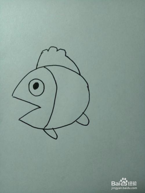 教你画小金鱼的简笔画