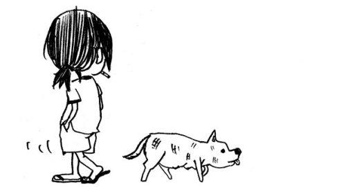 乳动物狗吉娃娃简笔画_哺乳动物狗吉娃娃简笔画-jiwawa