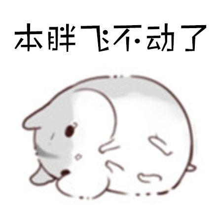 变成小仙女表情包_变成小仙女表情包_变成小仙女表情包 (440x440)图片