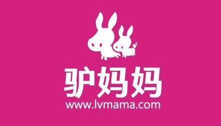 2016年2月11日,由华策影视战略投资驴妈妈旅游网8亿人民币.