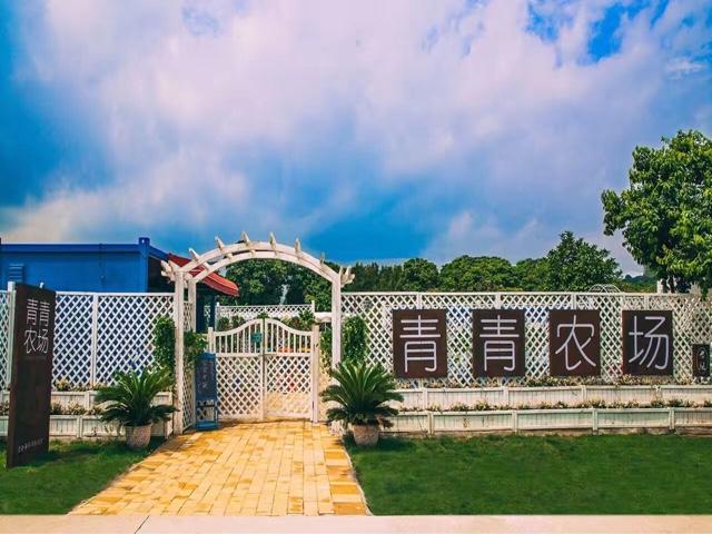 青青农场真人CS(晓庄国际广场店)