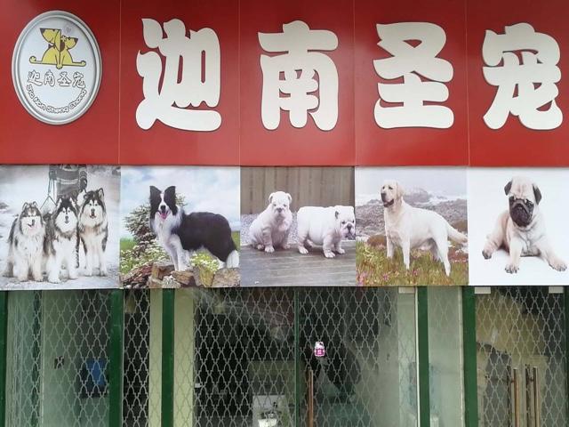 迦南圣宠(三林店)