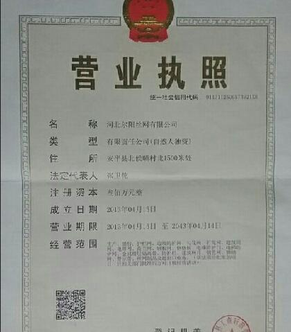 尔阳施工电梯防护门(安平店)
