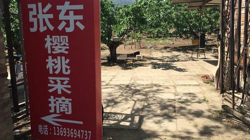 张东家樱桃采摘园(西北旺镇店)