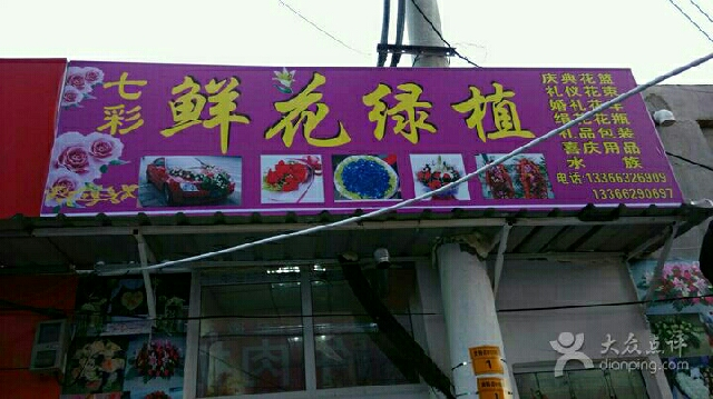 七彩鲜花绿植(昌平珠江摩尔店)