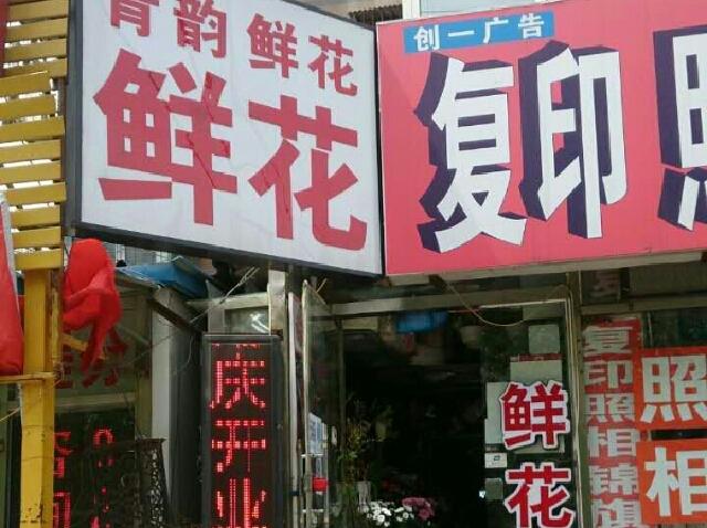 青韵鲜花(石佛营店)