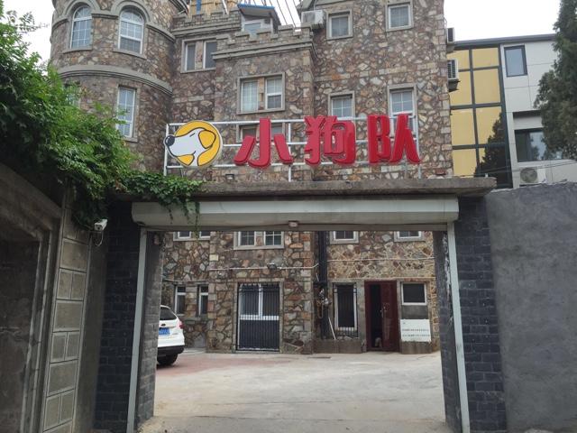 小狗队宠物俱乐部(阳光山庄店)
