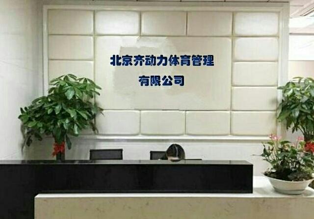 齐动力儿童网球(东风北桥华冠基地店)