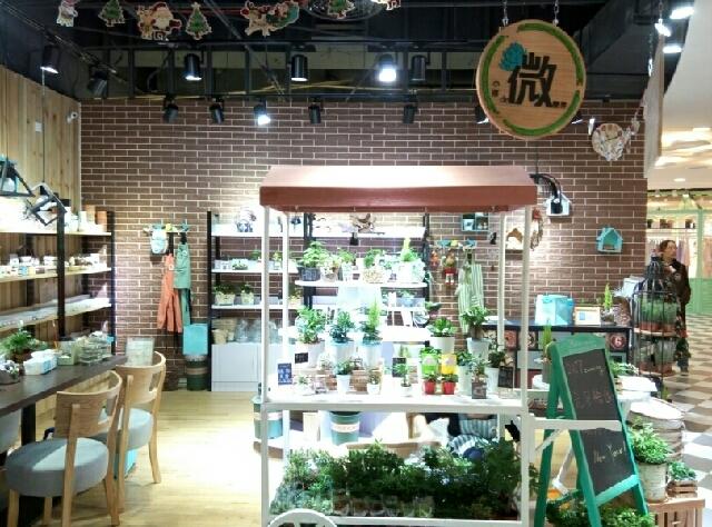 小落de微世界 微景观盆栽店(东百元洪城分店)