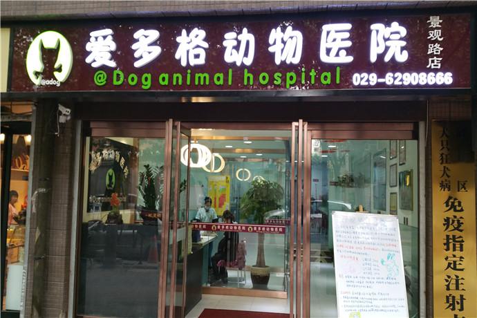 爱多格宠物医疗用品