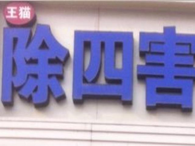 王猫除四害(中华大街店)