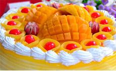 顶艺蛋糕(高埗店)