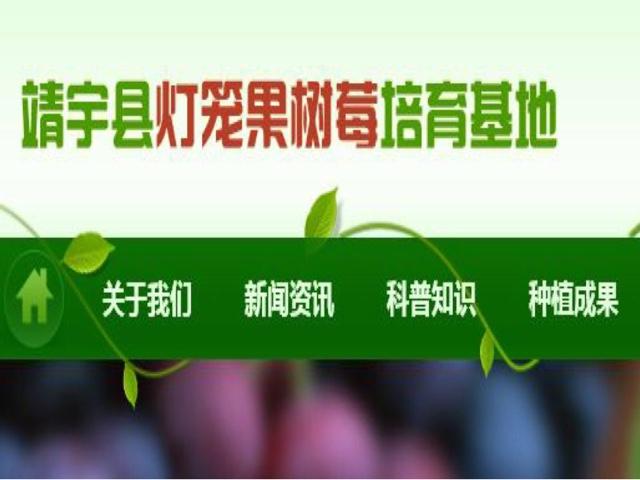 白山市靖宇县灯笼果专业种植合作社