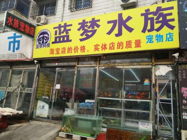 蓝梦水族宠物(马驹桥店)