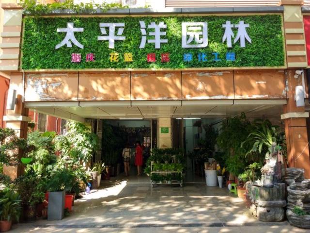 深圳太平洋园林鲜花店