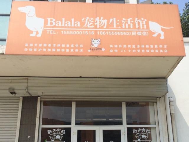 巴拉拉宠物生活馆
