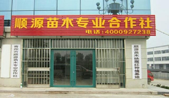菲士舞蹈培训中心