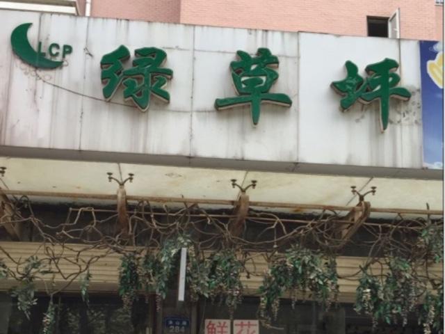 绿草坪(市区免费配送2店)