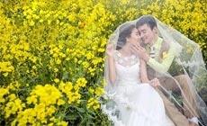 拉菲婚纱摄影(太东店)