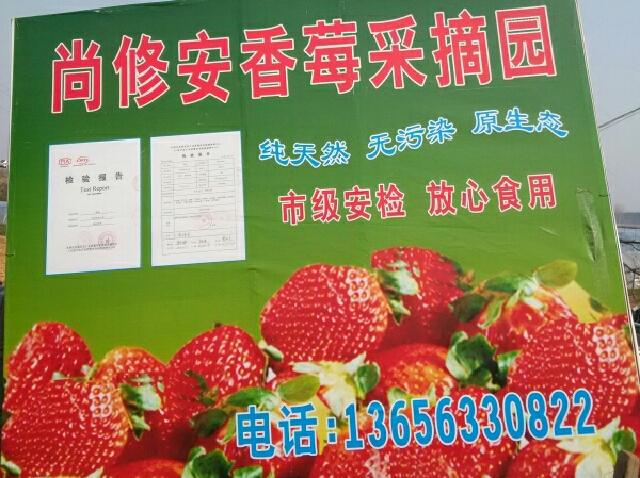 河山香莓草莓采摘园