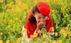 QQBaby专业儿童摄影