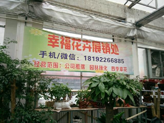 幸福花卉展销处(北郊店)