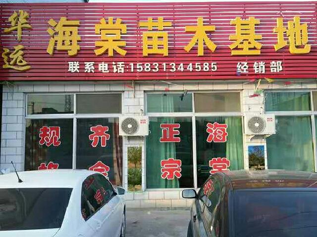 华远海棠(定州营村分店)