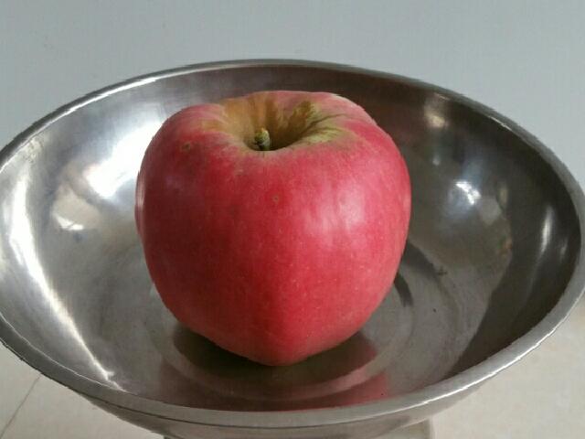 大芦荡苹果桃梨采摘园区