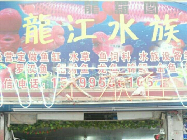 龙江水族馆