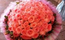 幸福里花卉
