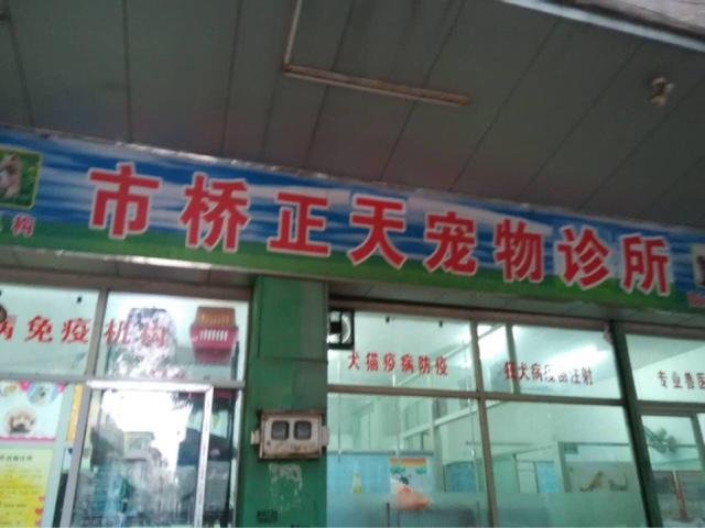 正天宠物医院(总店)