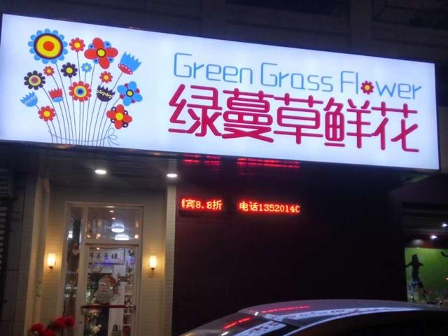 绿蔓草鲜花