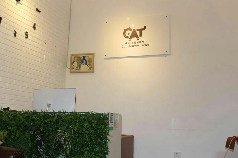 喵玩名猫生活馆