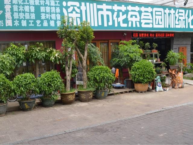 花茶荟园林绿化