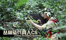 丛林骑兵真人CS