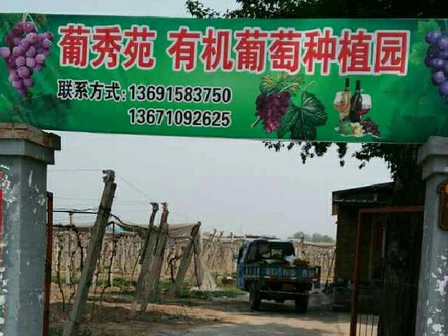 葡秀苑有机葡萄种植园