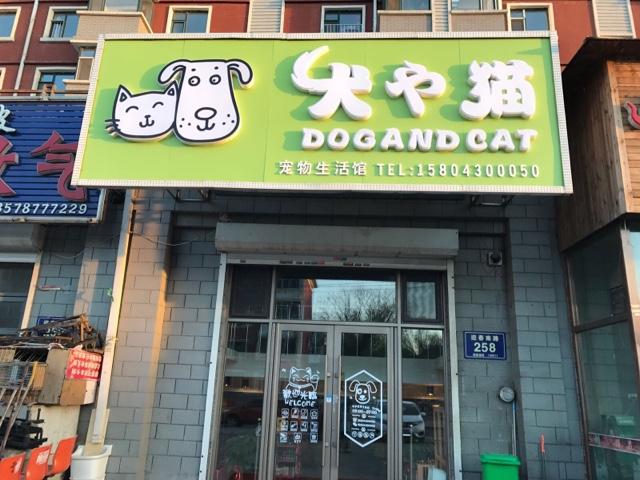 犬也猫宠物生活馆