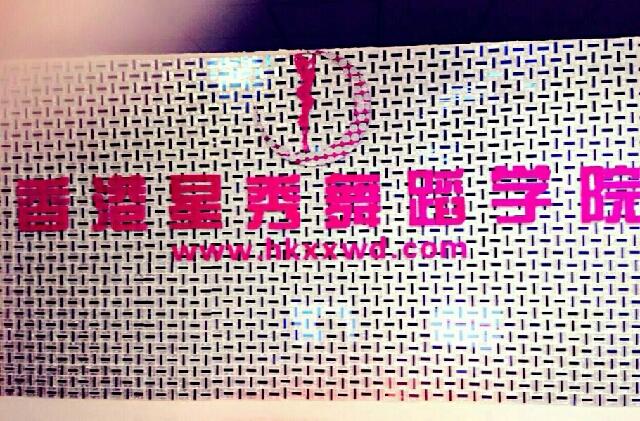 香港星秀舞蹈学院(南城店)