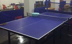法比乒乓球培训中心