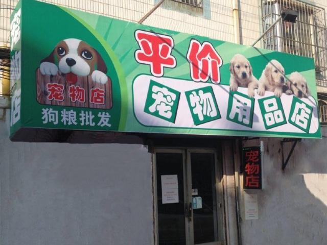 平价宠物用品店