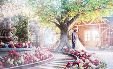 时尚新娘摄影
