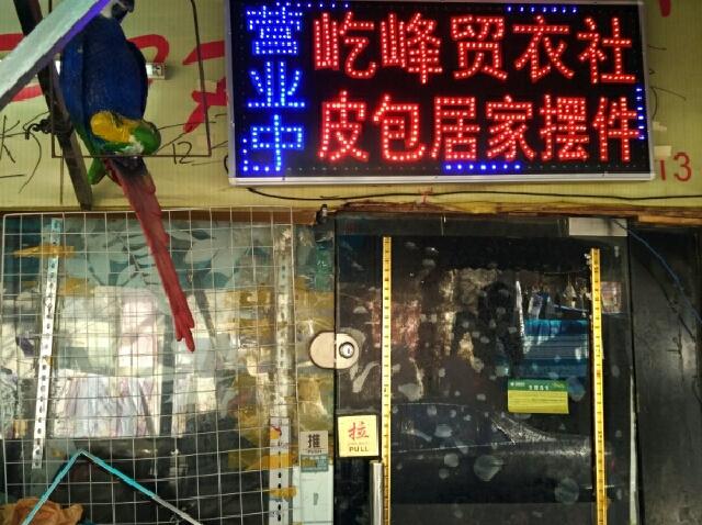 阿香隆江猪脚饭