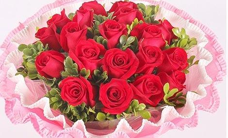 海棠19支玫瑰花束