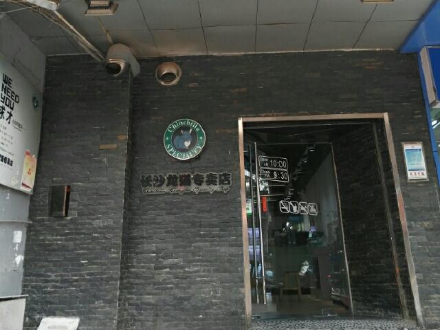 长沙龙猫专卖店