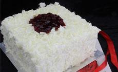 廿七客CAKE