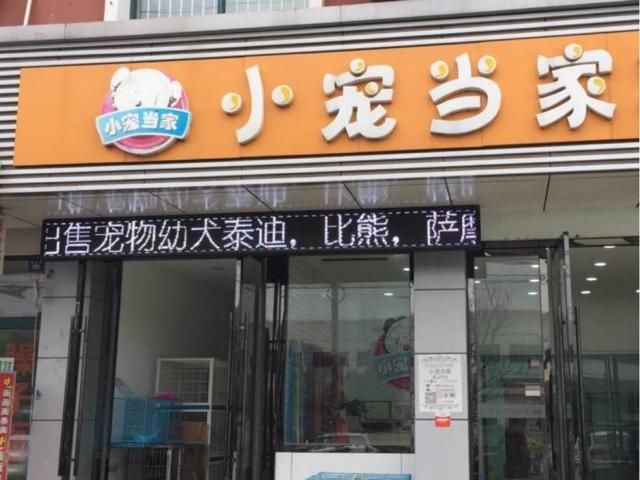 小宠当家(东港店)