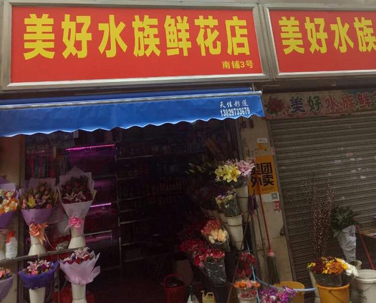 美好水族鲜花店